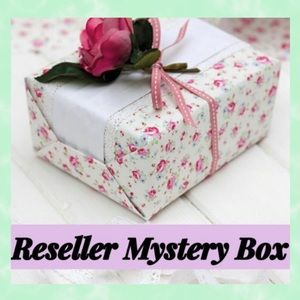 Reseller Mystery EUC Name Brands Inventory Box.